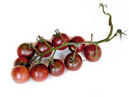 Black Cherry Tomato Plants | Black Cherry Tomato Plants For Sale