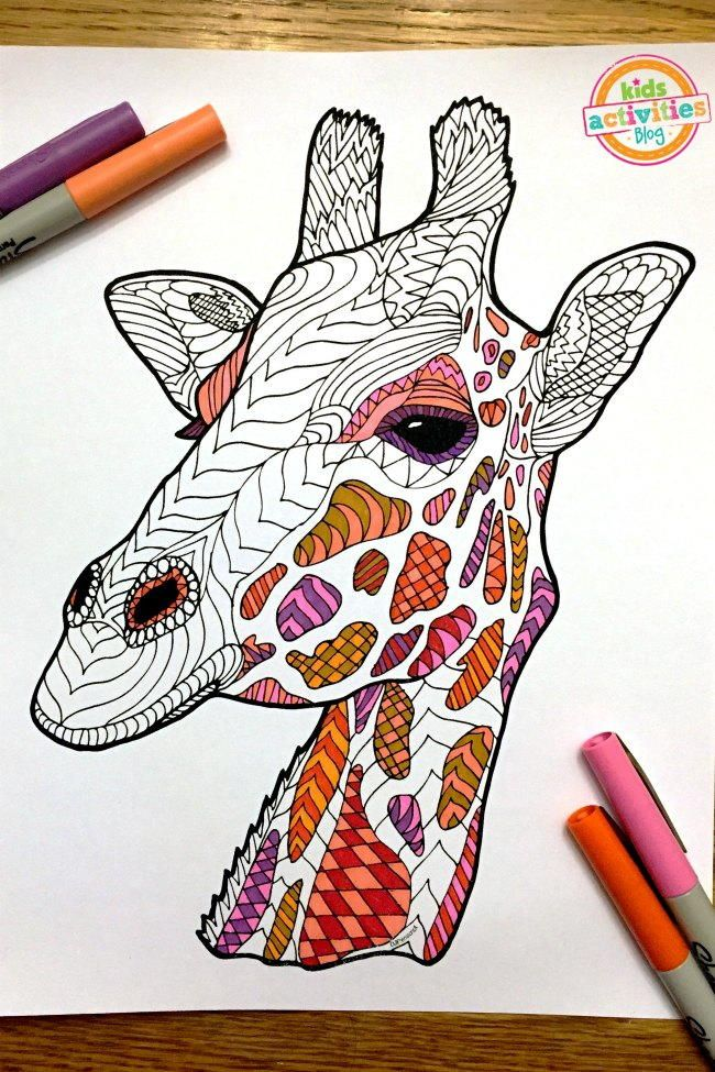 218 best Free Adult Coloring Book Pages images on Pinterest