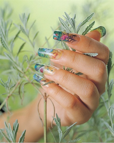 Trang Nguyen Odyssey Nail Systems @ www.odyssey.nailtech.com