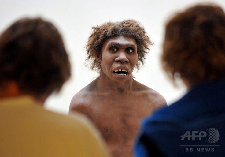 フランスのEyzies-de-Tayacにある先史博物館で、ネアンデルタール人の復元像を見る来館者(2008年7月2日撮影、資料写真FILE)。(c)AFP/PIERRE ANDRIEU ▼21Aug2014AFP|ネアンデルタール人、欧州で現生人類と数千年間共存か 研究 http://www.afpbb.com/articles/-/3023639 #Neanderthal #Homo_neanderthalensis #Homme_de_Neandertal #Neandertaler #Physical_model