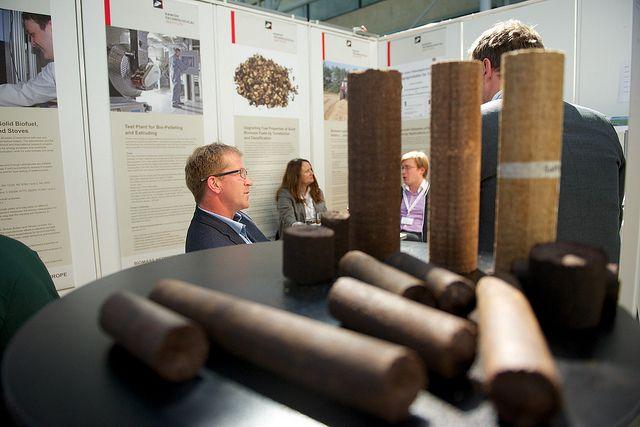 Soft wood, Exhibition Area, #biomass #conference #copenhagen