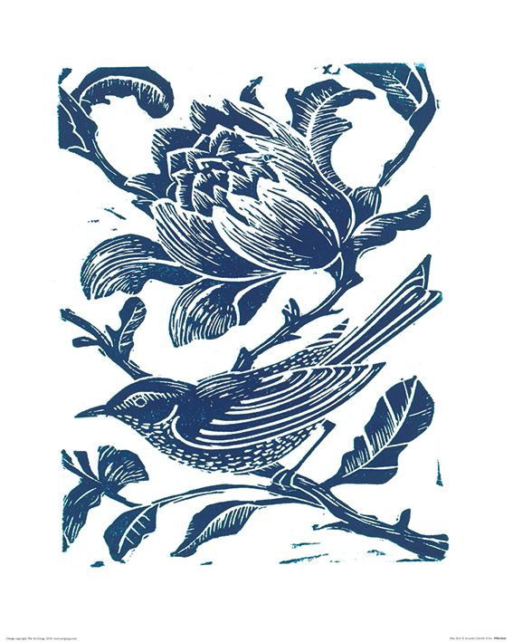 Searching for amanda colville blue bird