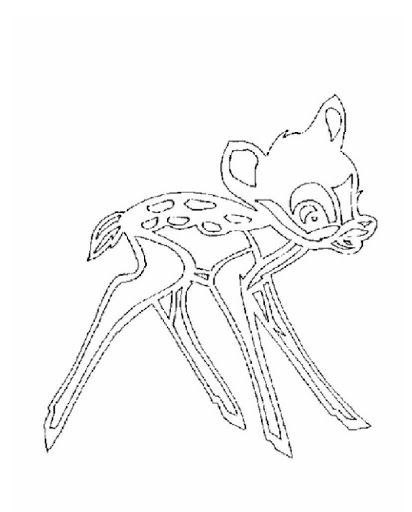 kirigami-zwierzęta - Wioletta Matusiak - Picasa Albums Web