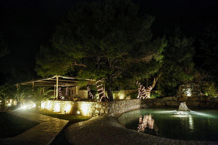 Μαγευτική εικόνα. Βράδυ στο κτήμα Αριάδνη, στον αυτόνομο χώρο Φαιστός με την λιμνούλα και τα όμορφα πεύκα.