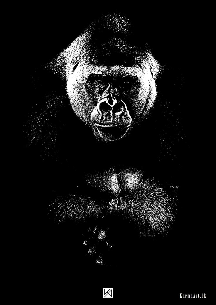 Billede af Gorilla plakat