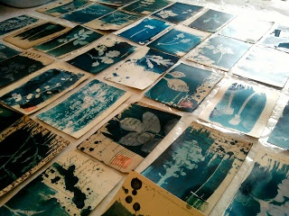 Cyanotype postcards by Hannah Lamb
