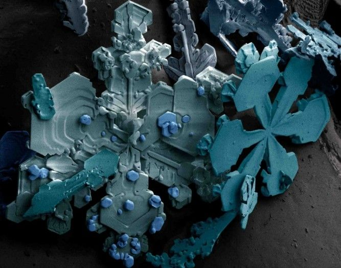 Snow flakes magnified by a scanning electron microscope (SEM). The colours, referred to as 'pseudo colours', are artificially generated.