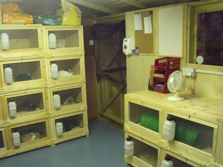 Lean To Shed Plans Free
