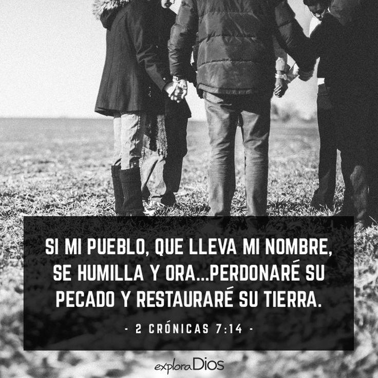 """""""Si se humillare mi pueblo, sobre el cual mi nombre es invocado, y oraren, y buscaren mi rostro, y se convirtieren de sus malos caminos; entonces yo oiré desde los cielos, y perdonaré sus pecados, y sanaré su tierra.""""  -2 Crónicas 7:14"""