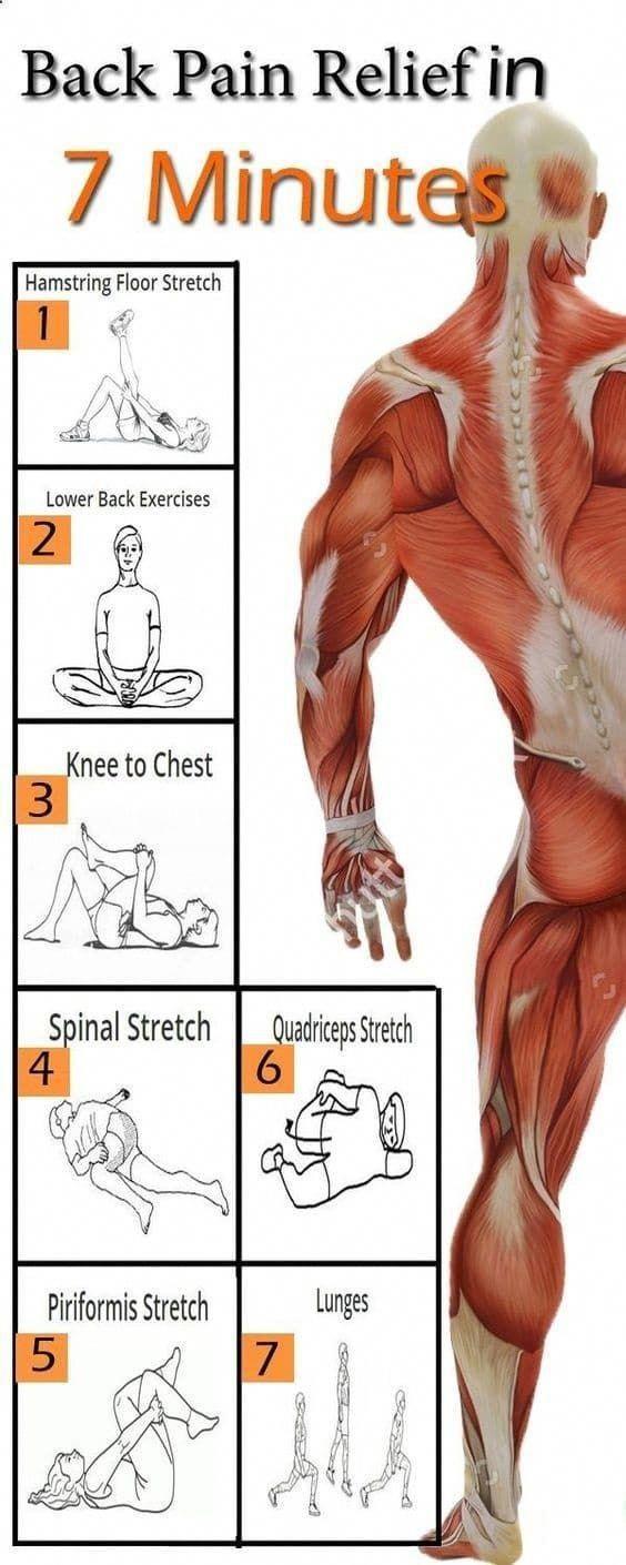 Beactive Brace as seen on TV | Arthritis Living Made Easier | Pinterest |  Back pain, Exercise and Workout