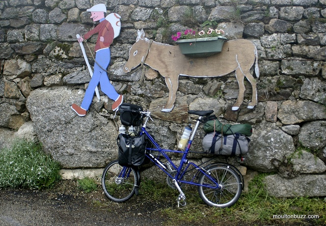 On the Robert Louis Stevenson Trail in the Cévennes, France, you can still find RLS walking with his donkey Modestine! :)    By moultonbuzz, via Flickr