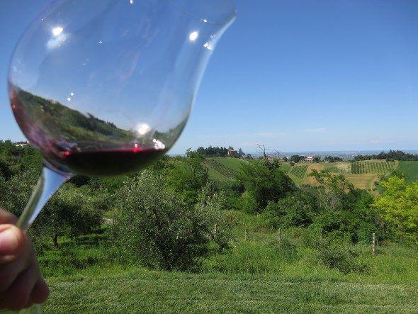 Emilia-Romagna Sangiovese-Wein Italien