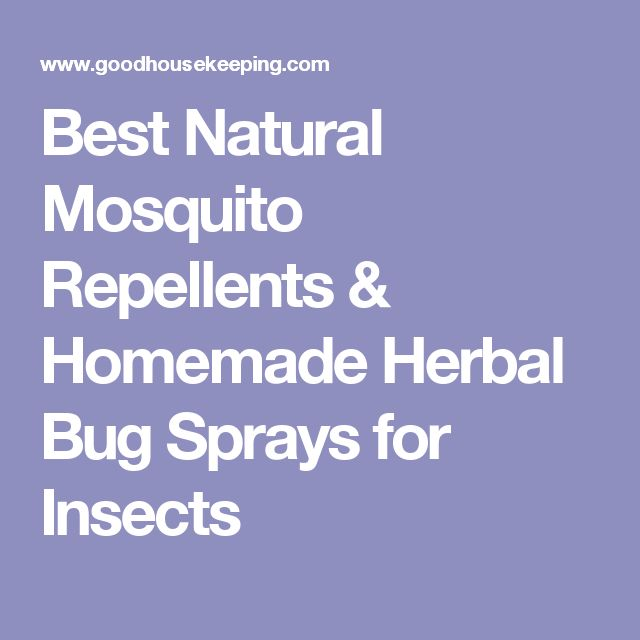 Best Natural Mosquito Repellents & Homemade Herbal Bug Sprays for Insects