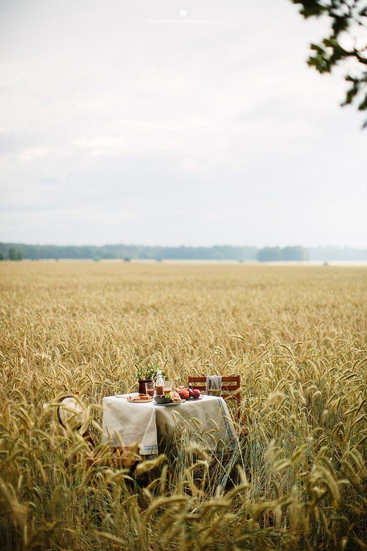 Breakfast between fields