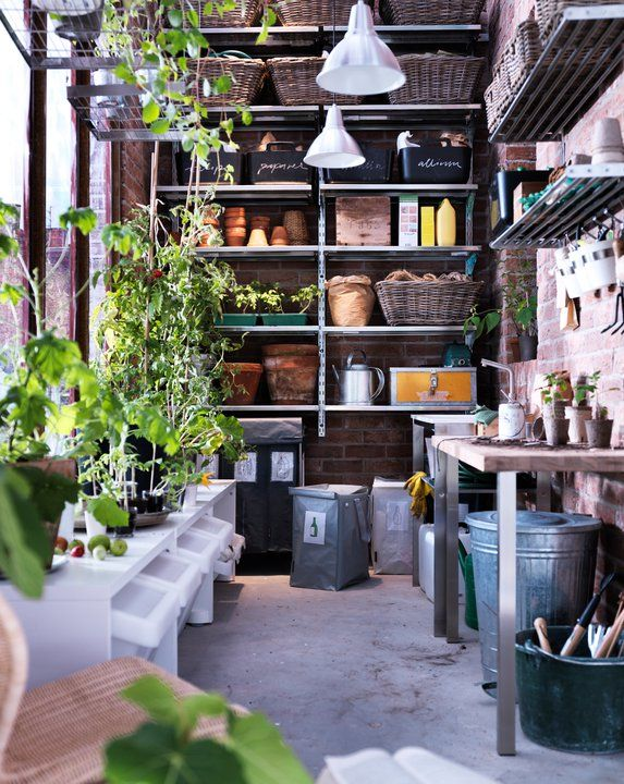 Creative organised potting shed