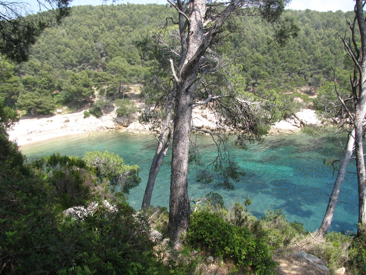 Cadière d'Azur, Provence. Photo by Gabriela Capurro.