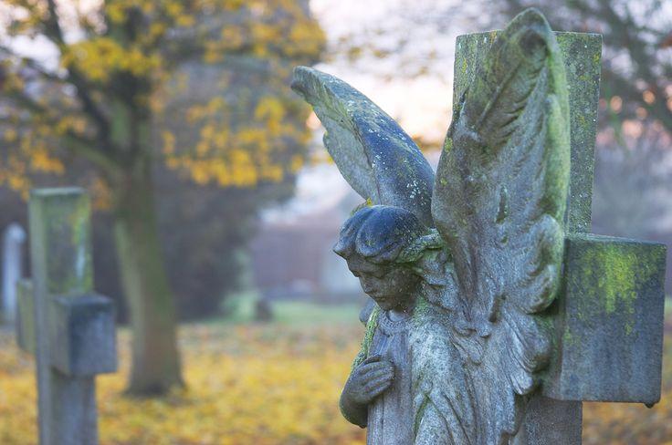 Stone Angel, Holy Cross Church, Sarratt   A stone angel stan…   Flickr
