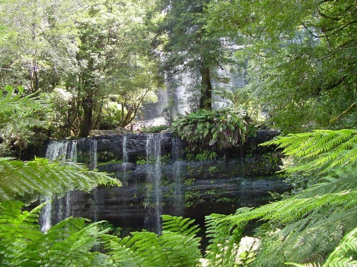 Russell Falls, Mt Field National Park. Photo by Dan Fellow, article for Think Tasmania.