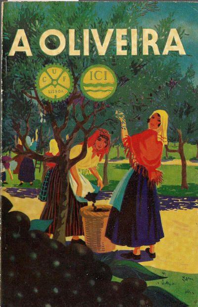 Olive Tree Culture - SEABRA, António Luís de, 1935