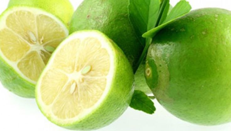 Il bergamotto è una varietà di agrume. E' un alberello più piccolo dell'arancio, dai rami pendenti. I suoi fiori esalano un profumo gradevolissimo.