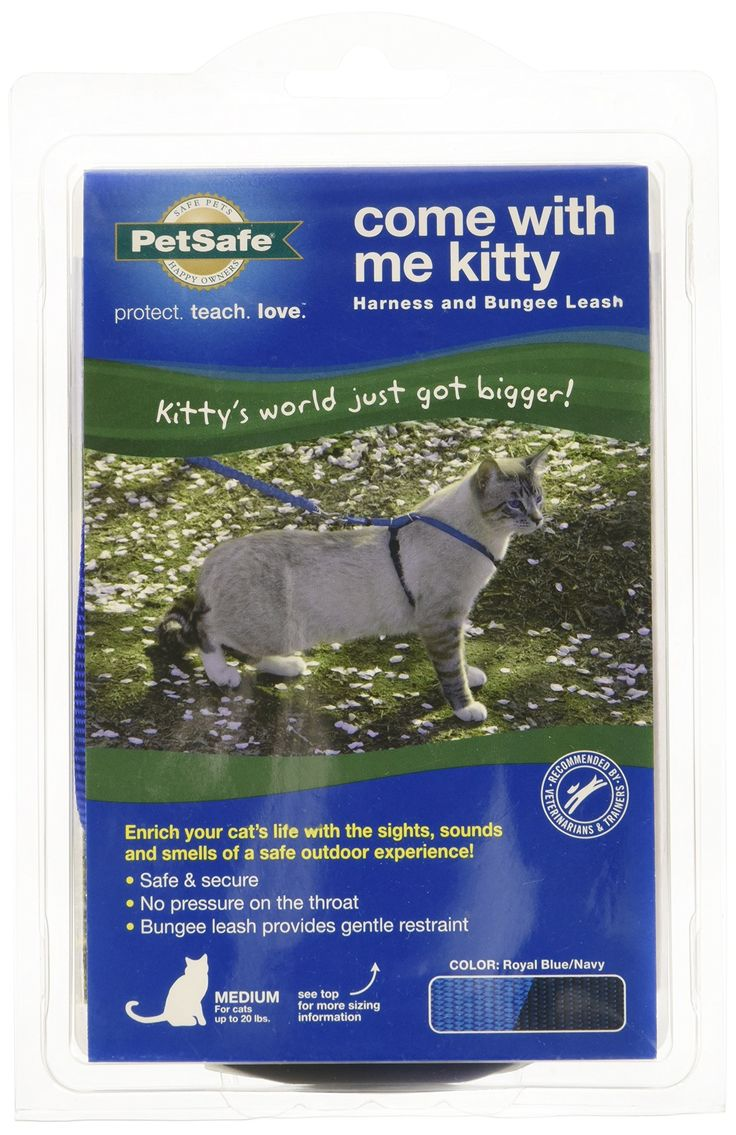PetSafe Come With Me Kitty Harness and Bungee Leash, Medium, Royal Blue