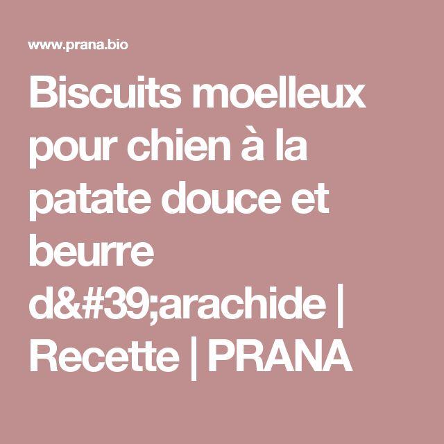 Biscuits moelleux pour chien à la patate douce et beurre d'arachide | Recette | PRANA