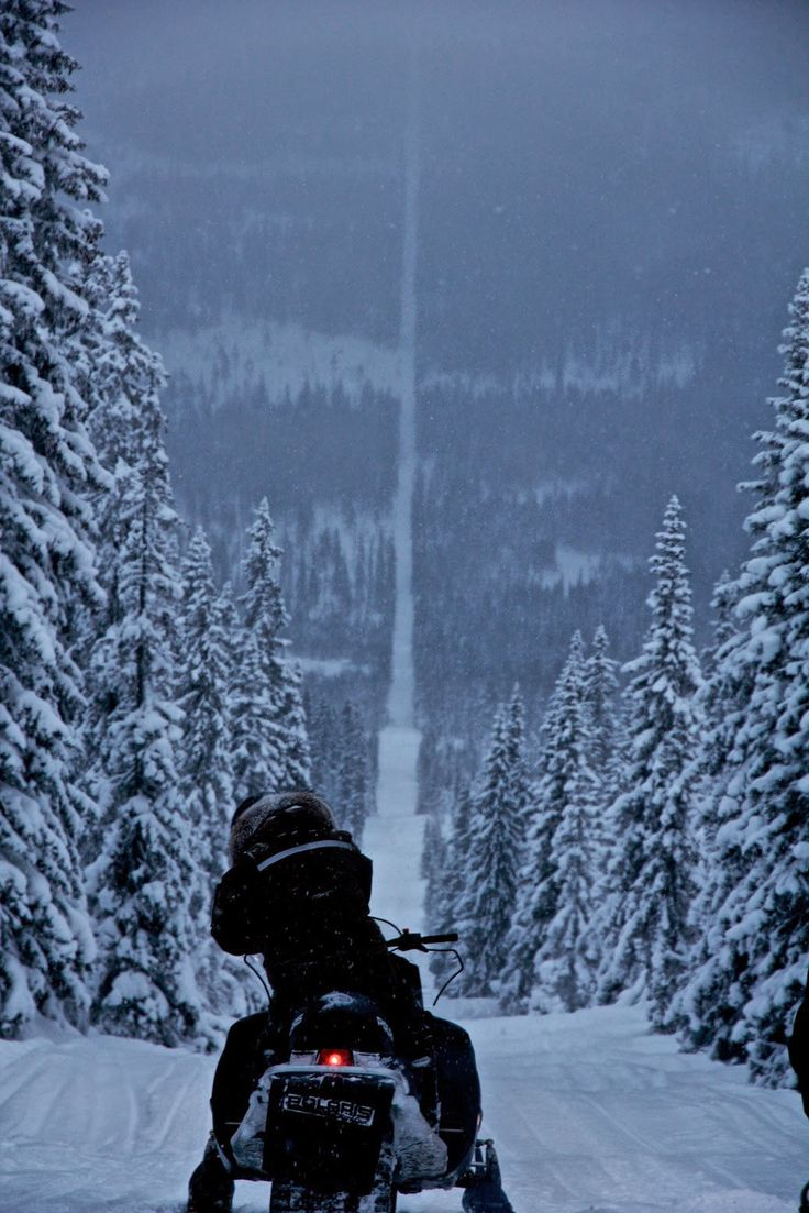 The border between Norway and Sweden ~ Winter ~ Lands of Ice & Snow