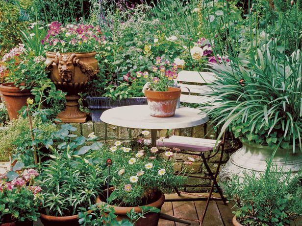 Container GardenGardens Outdoor, Flowers Garden