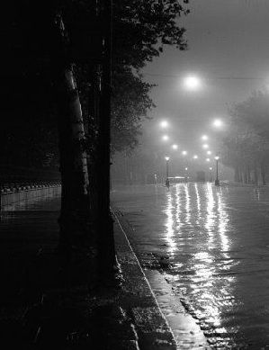 Abandoned rainy street with trees lining the way~ Perfect <3