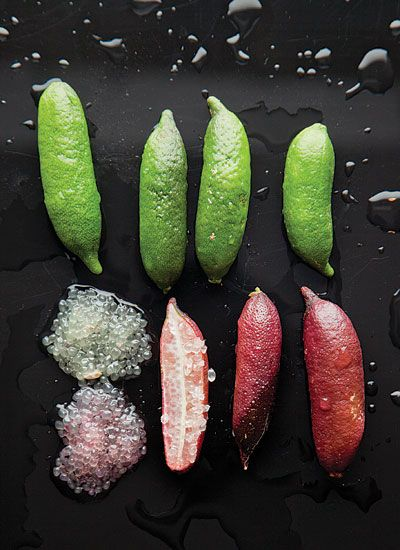 Finger limes are a cook's new best friend. Cleverly called 'citrus caviar', these Australian gems hold juicy mini-pearls that burst in your mouth with bright lime acids. Delish! California is growing them, too.