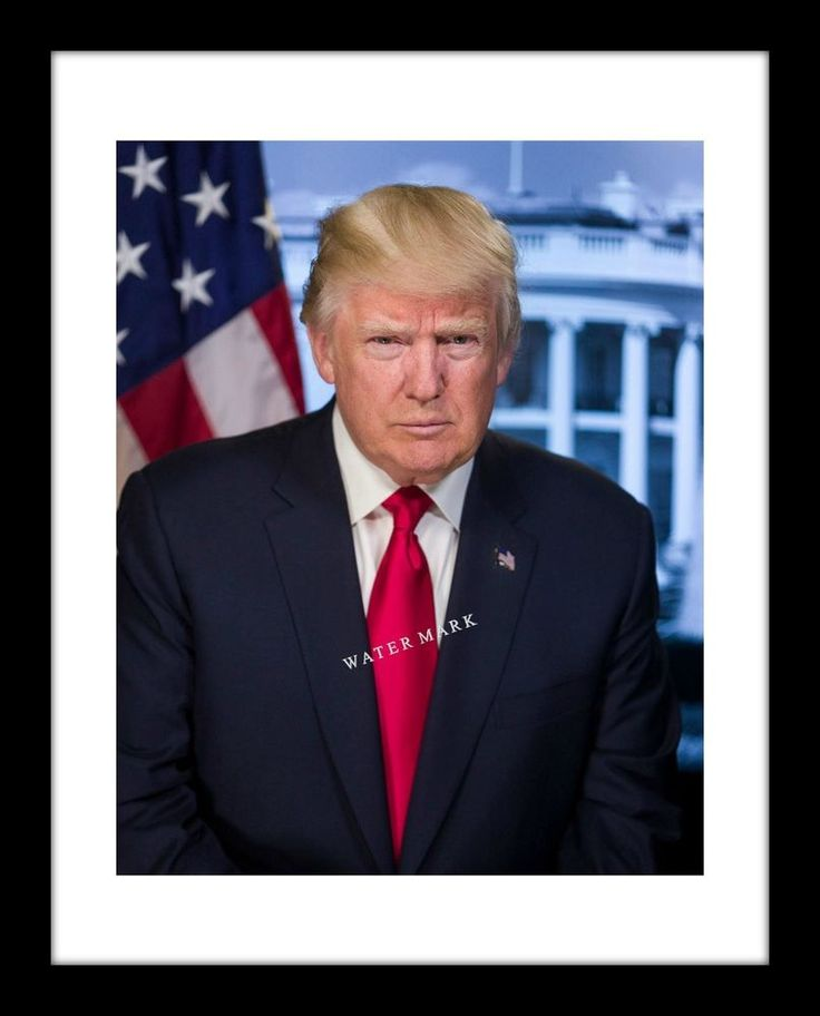President Donald Trump 11x14 Print Official Portrait USA GOP Republican | Collectibles, Historical Memorabilia, Political | eBay!