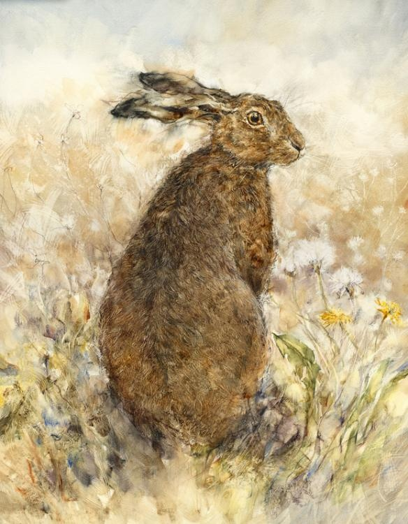 'The Curious Hare' by Gary Benfield. Available at www.artworx.co.uk