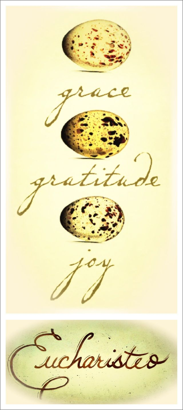 Grace, gratitude, joy---eucharisteo. Quote ~ Ann Voskamp, One Thousand Gifts