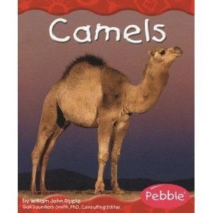 86 best camel books images on pinterest christmas cards camels love pebble books for new readers fandeluxe Images