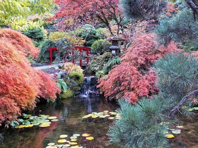 Colorful Butchart Garden | Victoria, Canada Photos