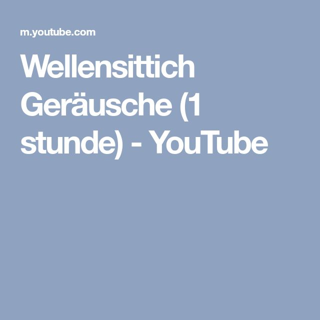 Wellensittich Geräusche (1 stunde) - YouTube