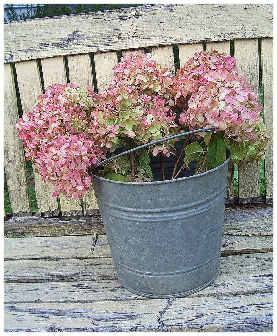 Galvanized Bucket Pail Vintage Farmhouse by rosepetalsandblooms, $22.00