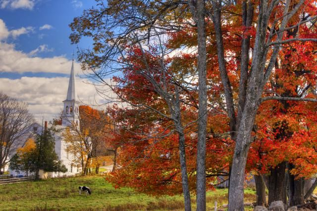 New England fall festivals 2015. Celebrate autumn at 10 fall festivals in Connecticut, Maine, Massachusetts, New Hampshire, Rhode Island and Vermont.