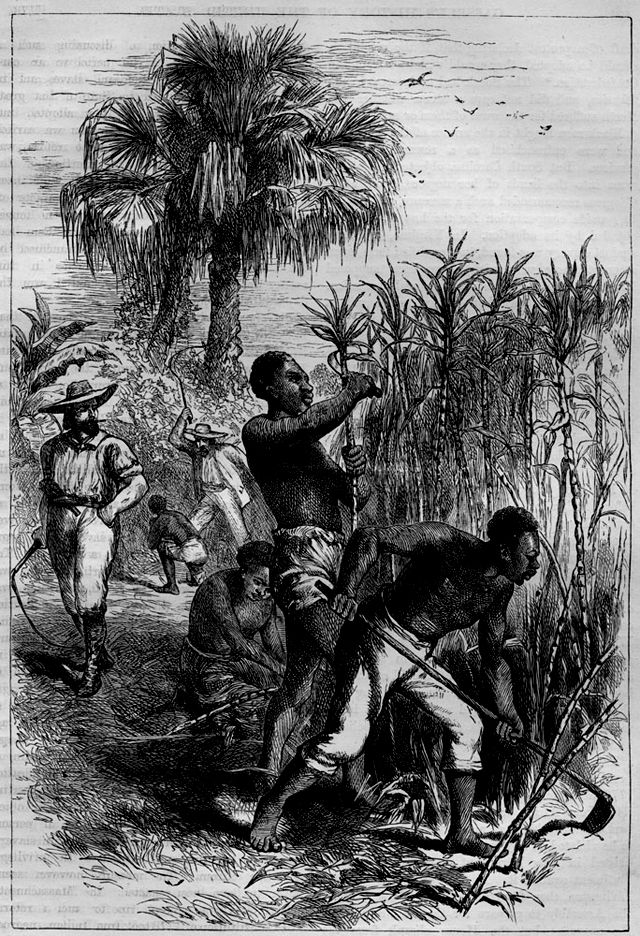the role of enslaved women in slave communities The granting of pensions to formerly enslaved women was tricky because   federal records including the census shed light on the gender roles  and  freedmen's bureau files shed light on communities, both slave and free.