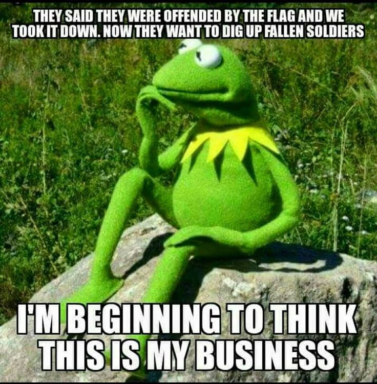 39 Best Muppet Quotes Lol Images On Pinterest: 24 Best Images About Kermit The Frog On Pinterest