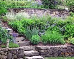 Výsledek obrázku pro ornamental garden slope pinterest