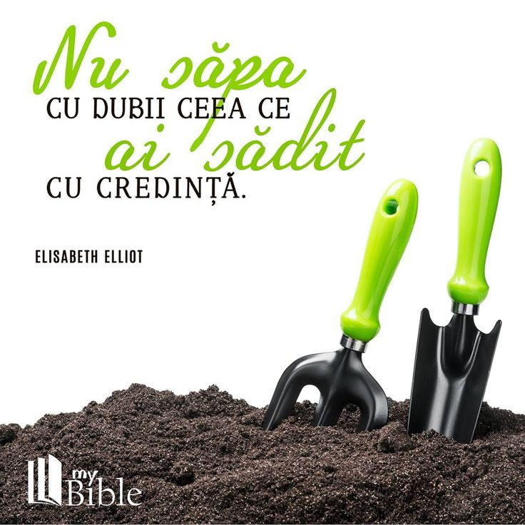Citeste Biblia si devotionalul online si pe aplicatia MyBible.