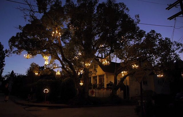 Incredible! The Chandelier Tree of Silver Lake http://www.thisiscolossal.com