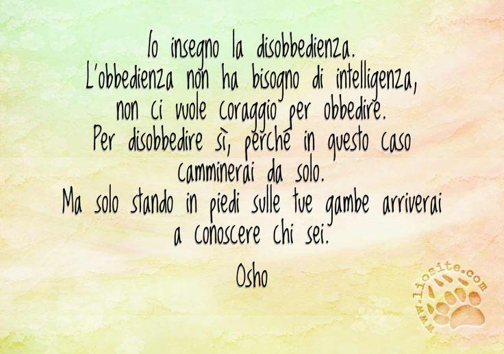 Forse come personaggio Osho sarà anche discutibile, ma certe sue affermazioni sono assolutamente condivisibili.  Io insegno la disobbedienza.  L'obbedienza non ha bisogno di intelligenza, non ci vuole coraggio per obbedire.  Per disobbedire sì, perché in questo caso camminerai da solo.  Ma solo stando in piedi sulle tue gambe arriverai a conoscere chi sei.  Osho  #osho, #obbedienza, #disobbedienza, #intelligenza, #coraggio, #italiano,