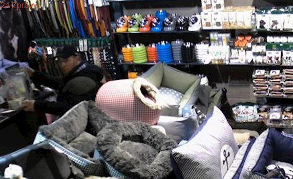 VIDEO: Zloději ukradli ve zverimexu kasičku se sbírkou pro psy z útulku