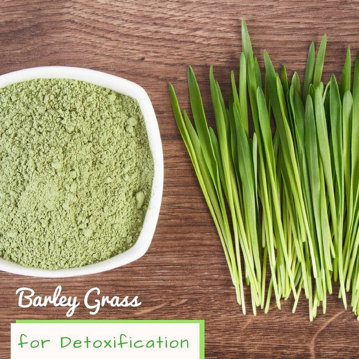 Barley grass is a wonderful natural detoxifier. The cleansing ability of barley grass is even effective in eliminating the accumulated harmful heavy metals including lead which may cause behavior and learning disorders particularly in kids. The major contributors behind the act of detoxification are trace elements zinc, selenium and copper. ⠀ ⠀ #USimplySeason #spices #BarleyGrass⠀ ⠀ Source: Organic Facts…