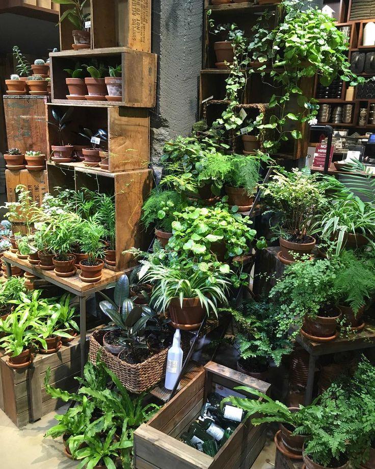 1000+ Ideas About Flower Shop Interiors On Pinterest