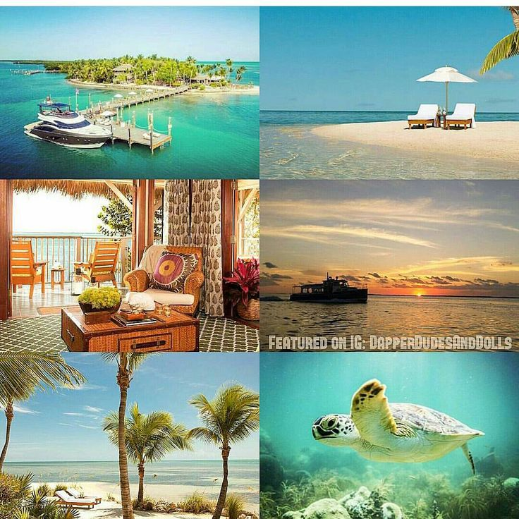 💗🌴💗 #TravelTuesday: #ValentinesDay Edition  3. 🌴🍹Little Palm #Island Resort & Spa, an exclusive private island off the coast of #FloridaKeys... https://www.instagram.com/p/BQhDLcFjptM/ {Follow Pinterest's photo link for full details, sources & photo credits.} ✨ #PutARingOnIt 💎💍 ✨ #Florida #beach #tropical #paradise #honeymoon #foodie #fishing #weddingseason #love #couple #globetrotter #travel #traveler #vacation #relationshipgoals #wedding #wanderlust #travelphotography #IDo…