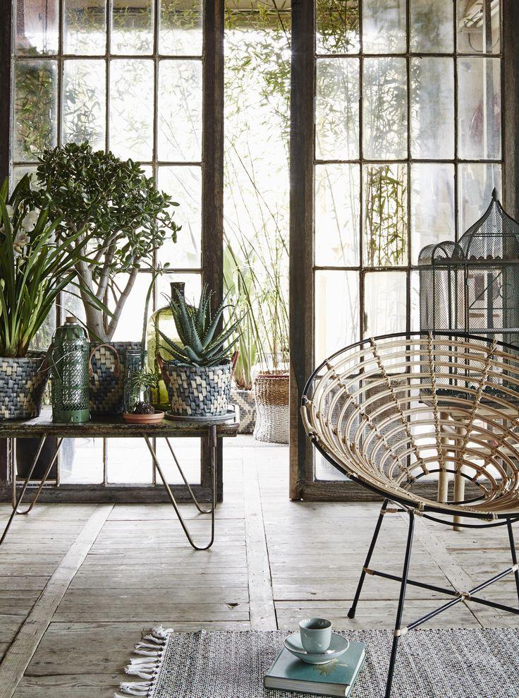 Botanical conservatory | Styling @cscheulderman | Photographer Alexander van…
