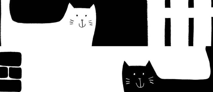 Gatto nero, gatta bianca: stupendo libro per bambini